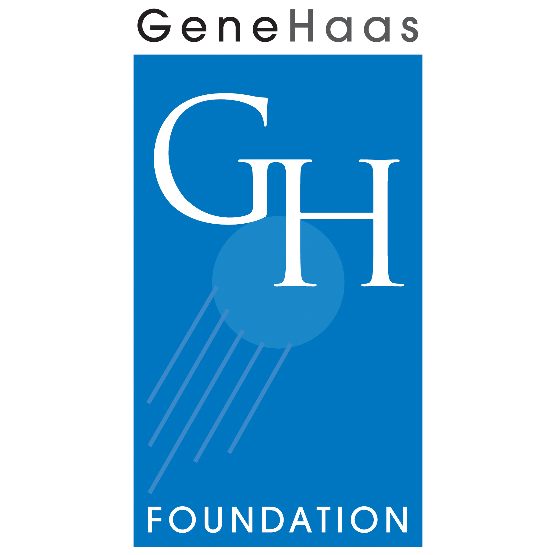STEM_GH_FoundationLogo.jpg